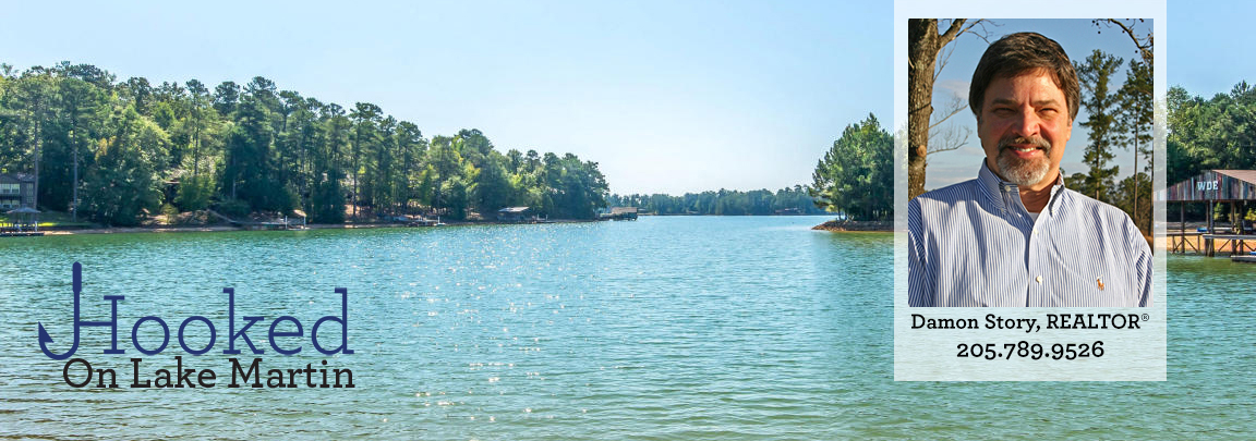 hooked on lake martin damon story realtor