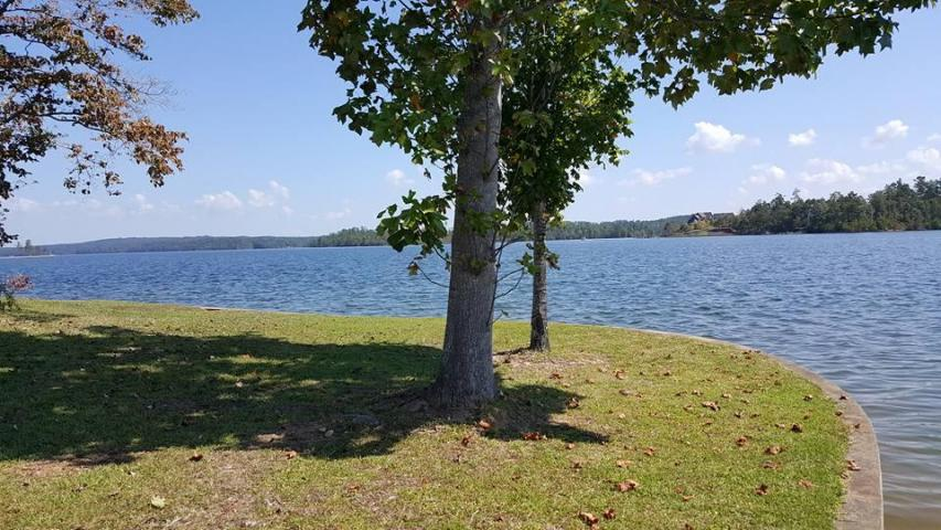 windermere point lot lake martin