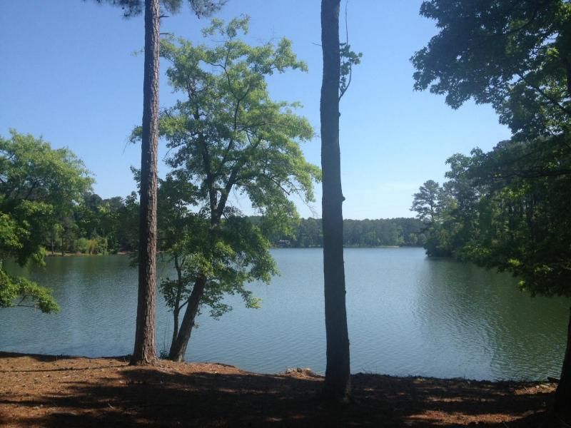 sold lot 32 cypress court lake martin